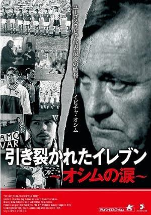 引き裂かれたイレブン~オシムの涙~ [DVD]