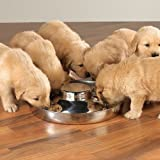 ProSelect Puppy Dish 14.5 In