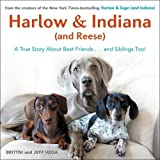 img - for Harlow & Indiana (and Reese): A True Story About Best Friends...and Siblings Too! book / textbook / text book
