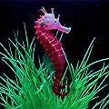 New Hipppcampus Red Aquarium Fish Tank Landscape Decoration Glow Simulation Animal Plants Ornament no.11