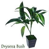 Ginni Bloom Artificial Green Cordyline Bush