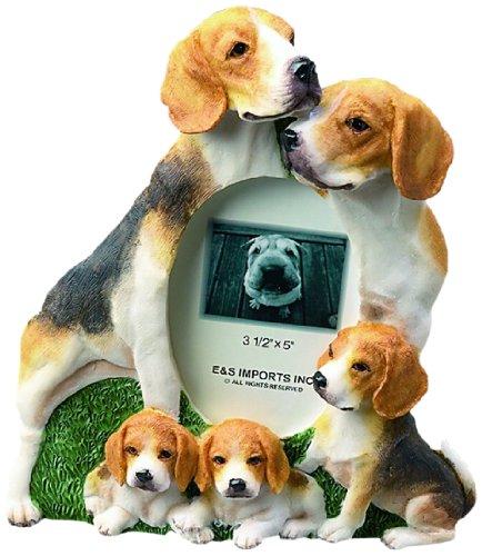 E & S Pets 35257-51 Large Dog Frame