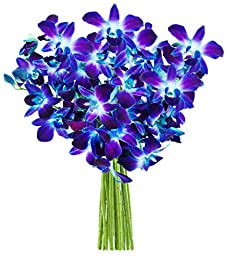 Blue Orchid Fresh Flower Bouquet (10 Stems) - Without Vase