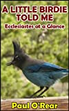 A Little Birdie Told Me: Ecclesiastes at a Glance
