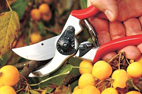 Felco Gartenschere Nr. 11, Rot, 210 mm, 250g*