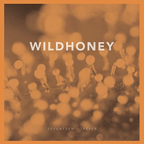Wildhoney – Seventeen Forever – 7INCH VINYL – FLAC – 2014 – FATHEAD