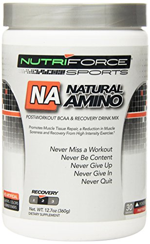 Nutriforce Natural Amino Supplement, Fruit Punch, 12.7 Ounce