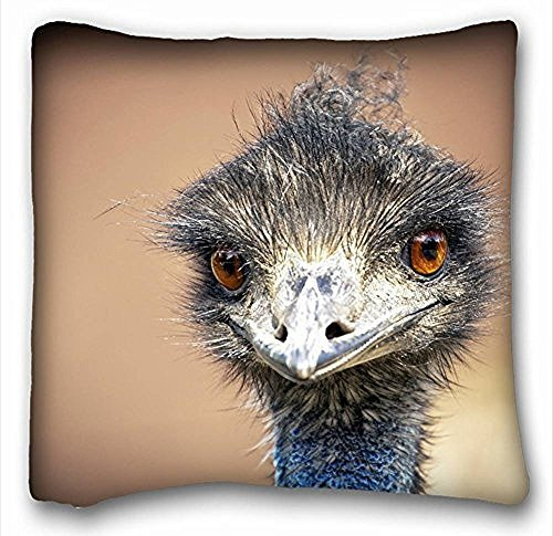 [My Honey Pillow Pillow Cover emu bird ostrich 18 in*18 Twin Sides] (Emu Costume Ideas)