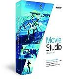 Sony Movie Studio Platinum 13【国内正規品】