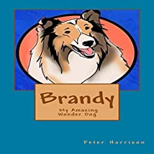 Brandy: My Amazing Wonder Dog Audiobook by Peter Harrison Narrated by Ryan Bergman