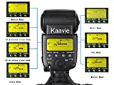 Kaavie - Travor SL-582N Large