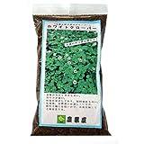 緑肥・景観用 種 【白クローバー ( シロツメクサ )】 小袋(約250g)