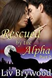 Rescued by the Alpha: Part 2, BBW Werewolf Romance (Silver Creek Pack)