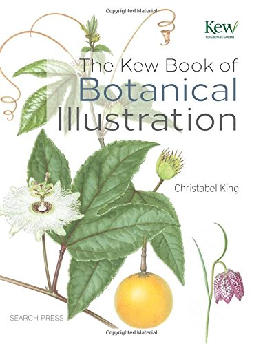 The Kew Book of Botanical Illustration (Botanic Drawing compare prices)