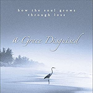 A Grace Disguised Audiobook