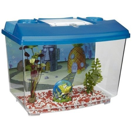 Penn Flax SpongeBob Aquarium Kit Review