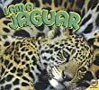 I Am a Jaguar