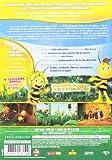 Image de Maya l'abeille - 5 - La naissance de Maya