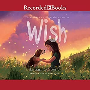 Wish Audiobook