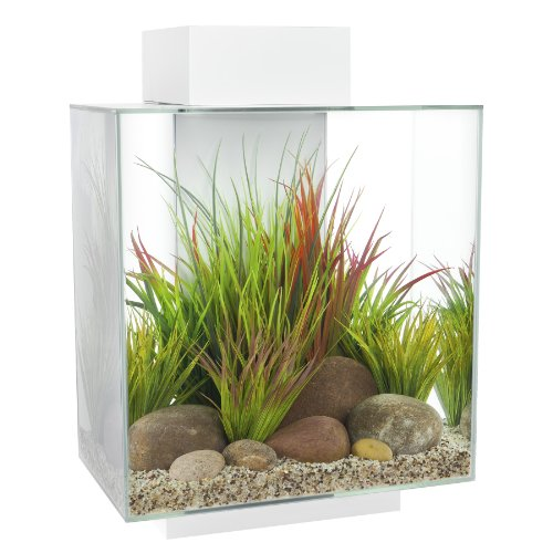 fluval-edge-12-gallon-aquarium-with-42-led-light-white