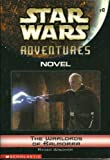 The Warlords of Balmorra: Star Wars Adventures - Novel #6 (0439458854) by Ryder Windham