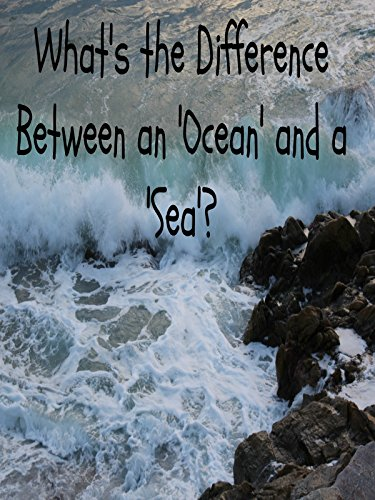 What's the Difference Between an Ocean and a Sea?