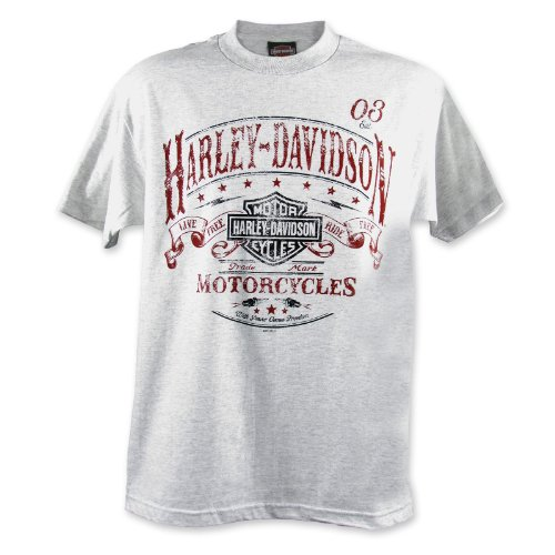 Harley-Davidson Ramstein Journey T-Shirt Mens, Medium, Ash