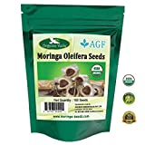 Organic Moringa Seeds (100). ★ USDA Certified Organic ★. Premium Grade High Germination Rate PKM1 Herbs Seeds.
