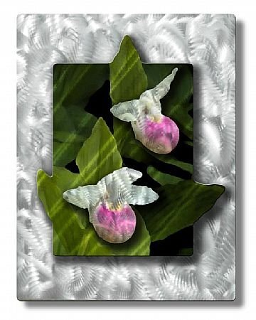 Cheap All My Walls NOR00002 Pink Lady Slipper (B004R6OWOI)