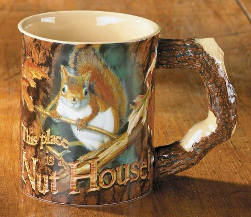 This Place Is A Nut House Squirrel Mug by Mia Lane