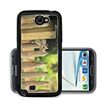 buy Liili Premium Samsung Galaxy Note 2 Aluminum Snap Case Grey Squirrel Looking Through The Wooden Fence Photo 20141934