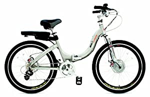 Prodeco Technologies G Plus Stride Electric Folding Bicycle (36V, 250W)