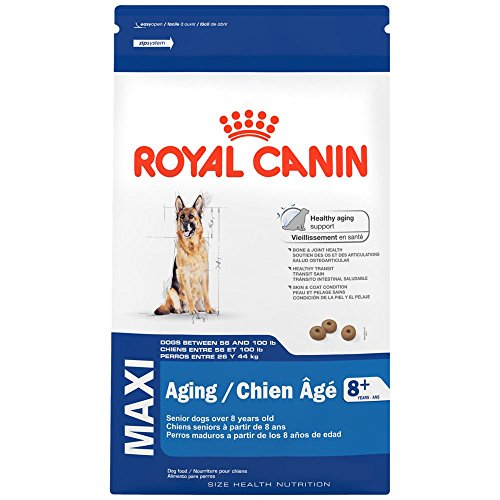 Royal Canin Maxi Aging Dog Food