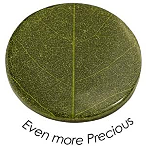 Quoins QMNK-L-BL-GR Münze Platte Even more precious large grün Bambusblatt