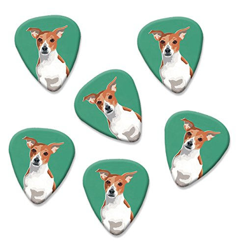 jack-russell-martin-wiscombe-6-x-guitar-picks-vintage-retro