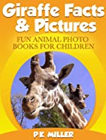 Giraffe Facts & Pictures