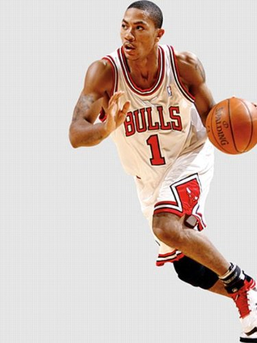 chicago bulls wallpaper 2011. chicago bulls wallpaper logo.