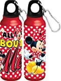 Disney's Minnie Mouse - All About Me - Aluminum Water Bottle