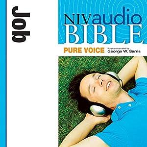 NIV Audio Bible, Pure Voice: Job Audiobook