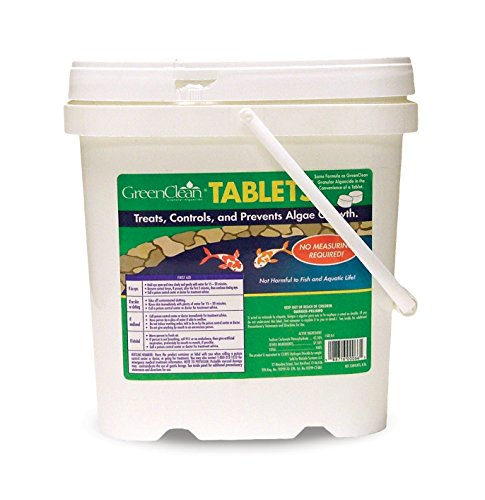 biosafe-systems-3007-8-greenclean-tablets-8-lbs