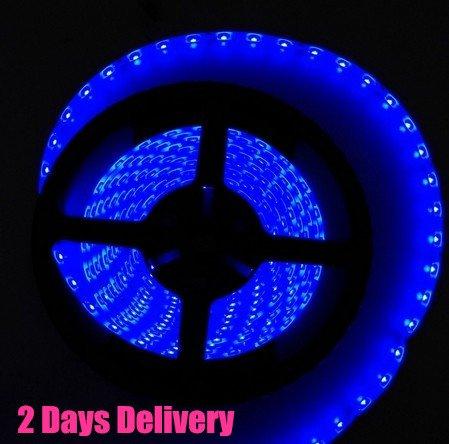 5M Waterproof 300 Led 3528 Smd Flexible Led Light Lamp Strip 12V (Blue, 1 Pcs 3528)