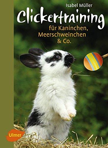 clickertraining-fur-kaninchen-meerschweinchen-co-heimtiere