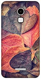 The Racoon Grip printed designer hard back mobile phone case cover for Coolpad Note 3. (heart)