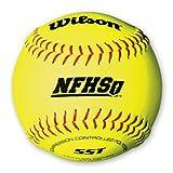 Wilson A9011BSST NFHS Fastpitch Softballs - 1 Dozen by Wilson