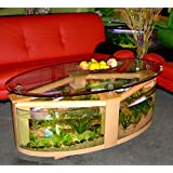 Oval Coffee Table Aquarium with filter, pump, light, completely fish ready
