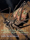 Breeding the World's Largest Living Arachnid: Amblypygid (Whipspider) Biology, Natural History, and Captive Husbandry