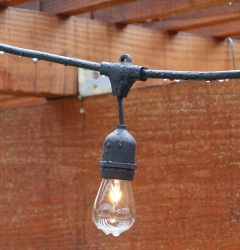 Outdoor String Lights (48ft) with Bulbs - Heavy Duty Garden Hanging Market Patio Cafe Pergola ...