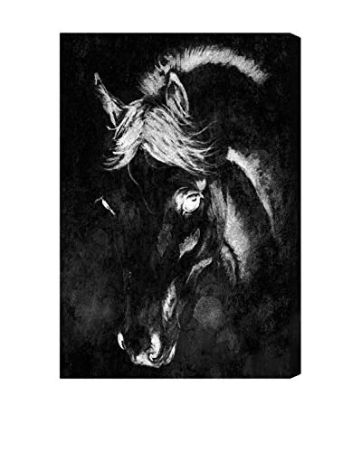 Oliver Gal Black Beauty Canvas Art