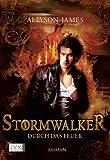 Stormwalker: Durch das Feuer