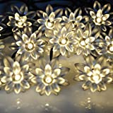Solar Powered LED String Lights 5M 20LED Double Lotus Flower For Christmas Garden,Outdoor,Party.Patio,Lawn,Fence,Yard Decorations, etc. (Warm white)